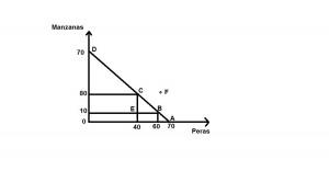 Grafico 1 FFPP