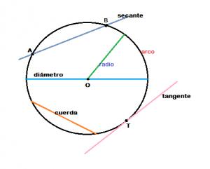 Circunferencia_Fig 2